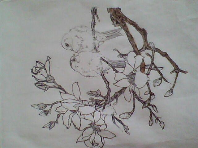 简单图片大全 海贼王手绘铅笔图片