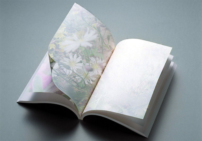 打开的书本_打开的书本简笔画