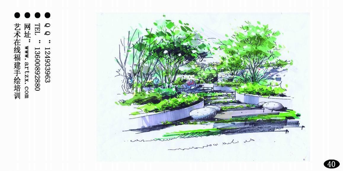 盆栽平面图手绘
