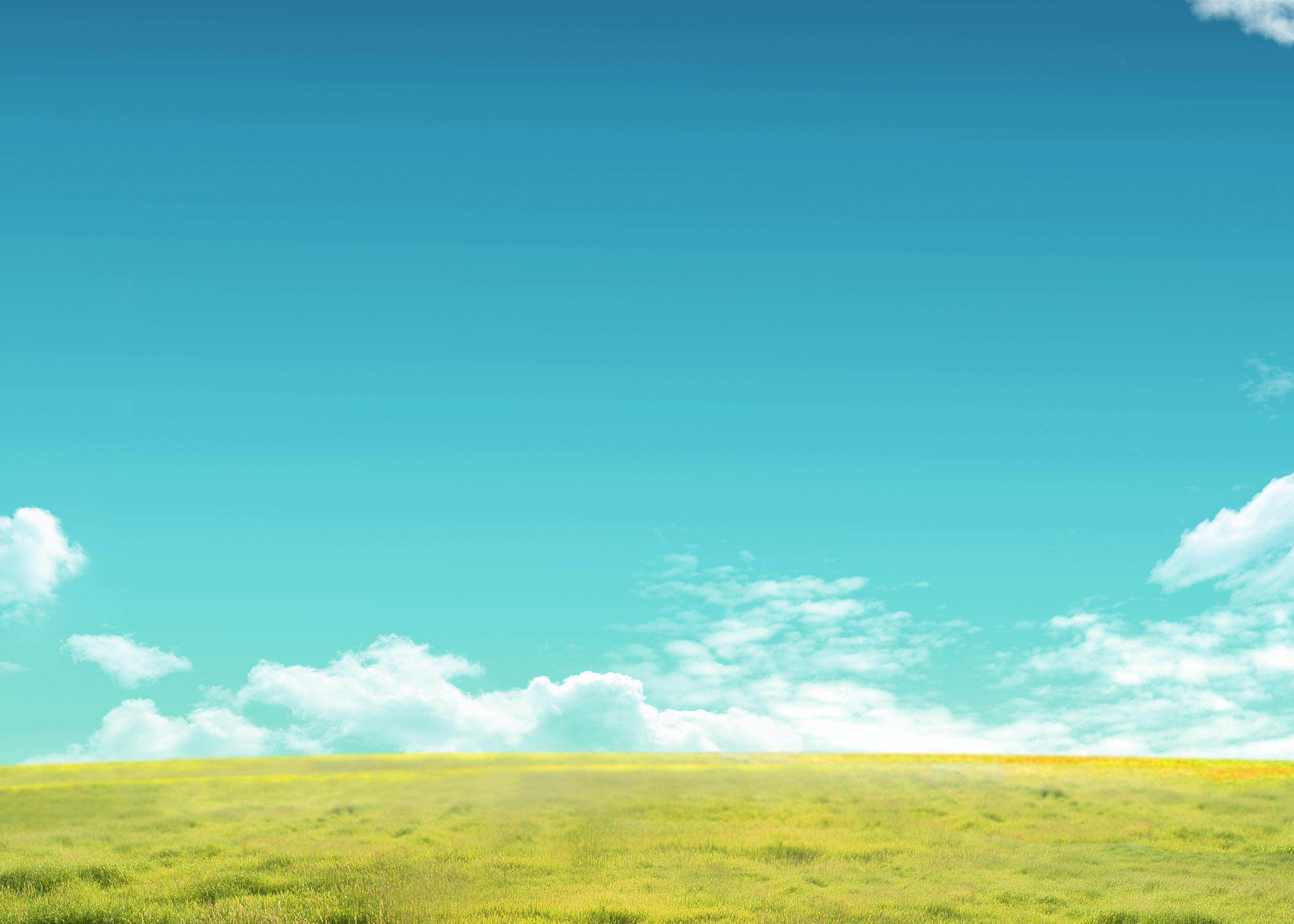 草地 清新