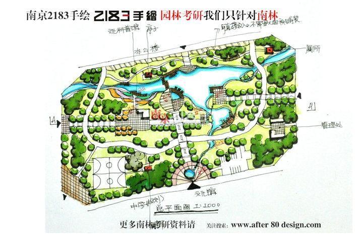 设计师南京2183手绘