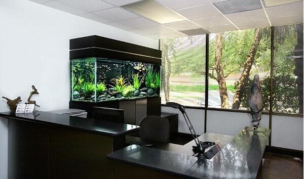 办公室鱼缸放置位置_