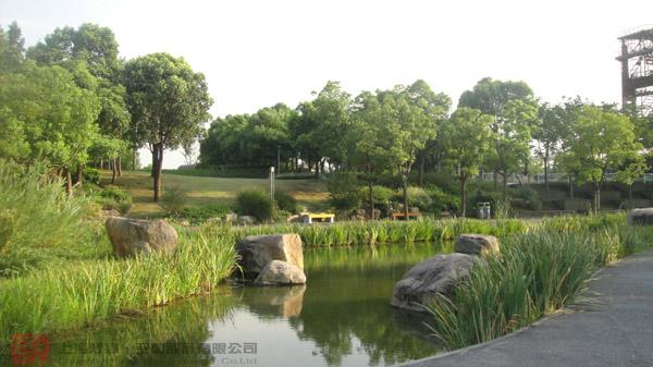 园林景观植物空间类型-公司动态