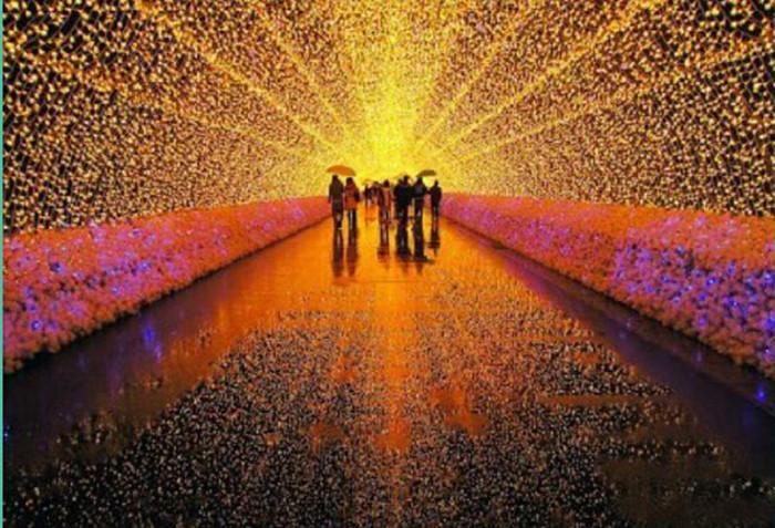 街道树木美化 发光led 景观照明 创意 亮化景观美陈