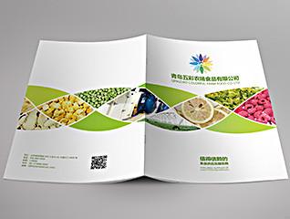食品公司画册