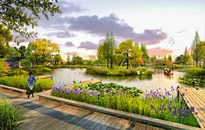 公园绿化鸟瞰图