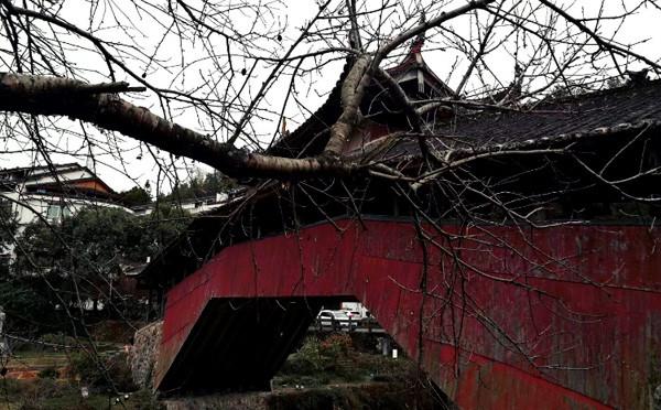 古建筑 活廊桥 桥梁史上堪称一绝