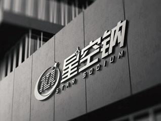 星空钠新能源公司logo设计