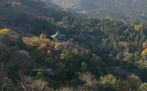 """""""新北京十六景""""——香山公园"""