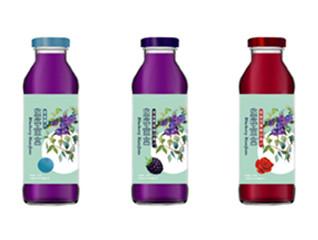 【食品饮料】蓝莓系列包装