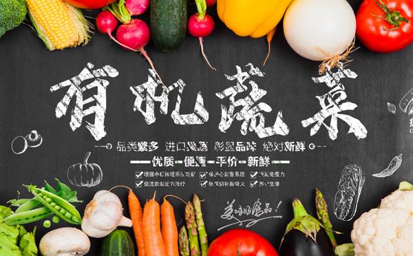有機蔬菜海報模板