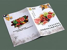 德昌康鴻農業發展有限公司水果系列畫冊