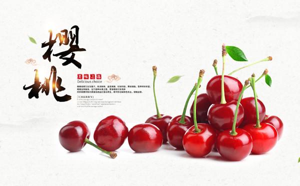 水果海报模板