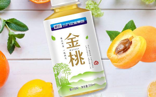桐珍 · 三九企業集團 · 金桃果汁飲料包裝設計
