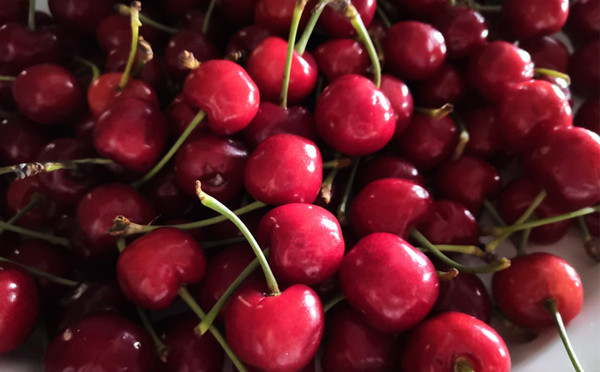 食光集-紅櫻桃