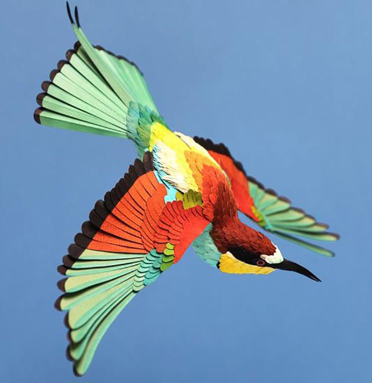 人们很难抗拒这些色彩斑斓的纸鸟