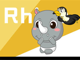 犀牛與鳥 創意卡通動物形象設計