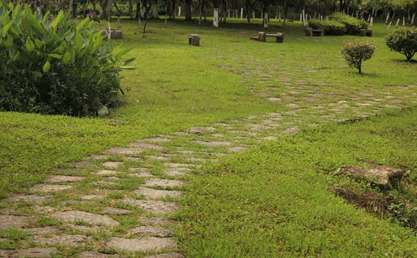 公園石板路