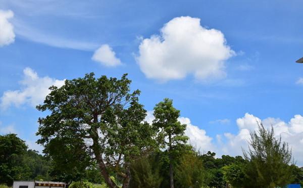 云在天空都看着