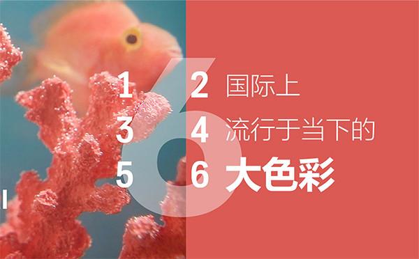 [海平面]国际上,流行当下的六大色彩