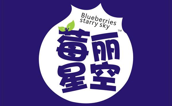 莓丽星空 · 蓝莓酵素果汁 酵素果汁饮品 | 产品包装设计