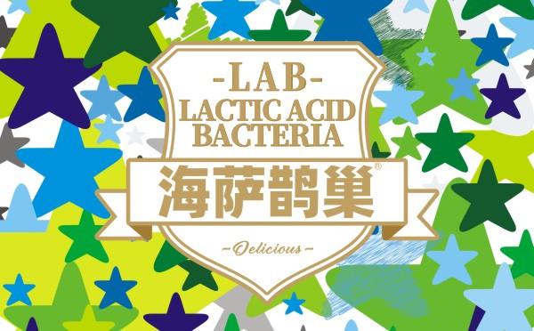 海萨鹊巢  乳酸菌包装设计  乳饮品包装设计 品牌视觉形象设
