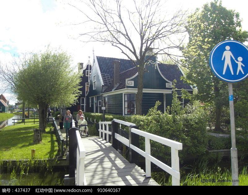 荷兰郁金香花园风景实拍原图图片