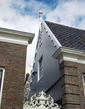 荷兰郁金香花园风景实拍原图