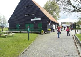 荷兰郁金香花园风景实拍