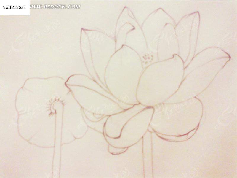 清新淡雅的手绘荷花高清图片下载 编号1218633 红动网