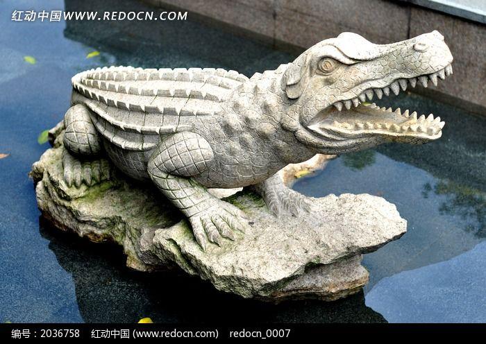 石头鳄鱼图片图片