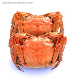 中华美食—大闸蟹