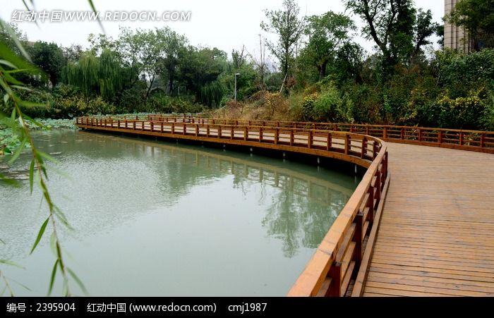 青枫公园木质亲水平台