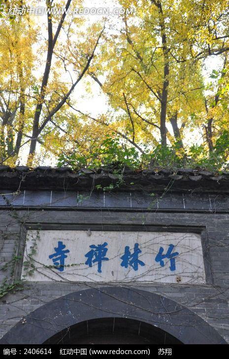 镇江南山竹林寺图片,高清大图_森林树林素材