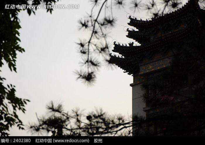 透过树叶看西安古建筑图片