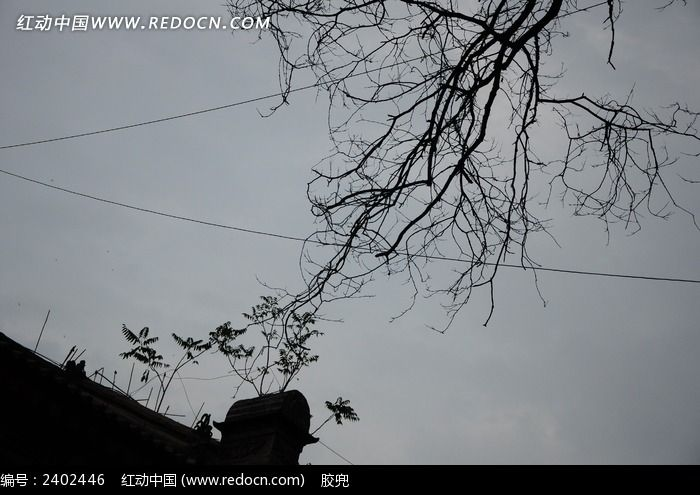 古城剪影树枝剪影图片图片