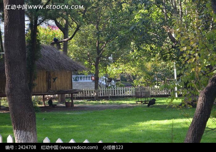 绿色草地上的小木屋图片