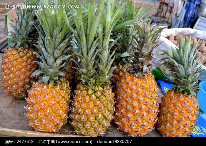 一排菠萝图片,高清大图_水果蔬菜素材