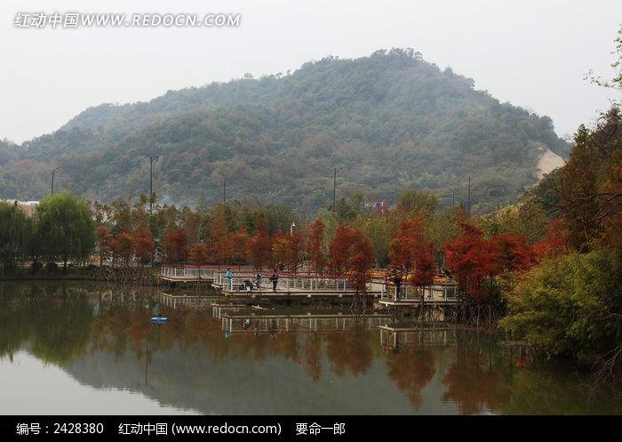 中央山公园秋景图片
