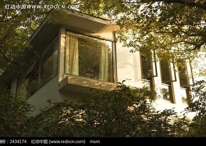 树丛间的房子图片