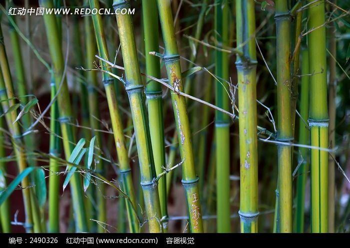 手工制作用竹子做船