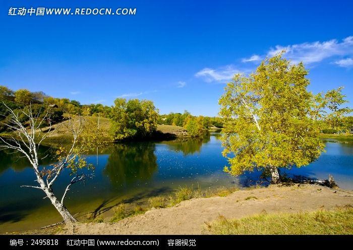 水岸边的胡杨树图片,高清大图_草原风光素材