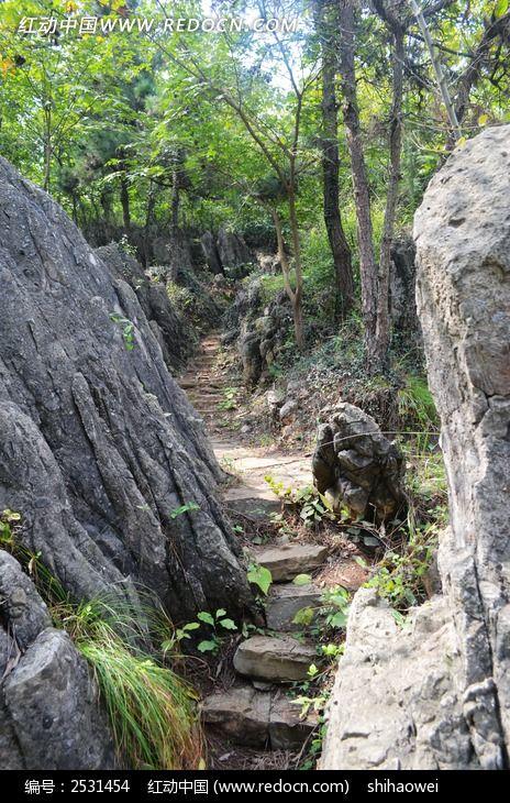 原创摄影图 自然风景 森林树林 > 八公山石林小路图片