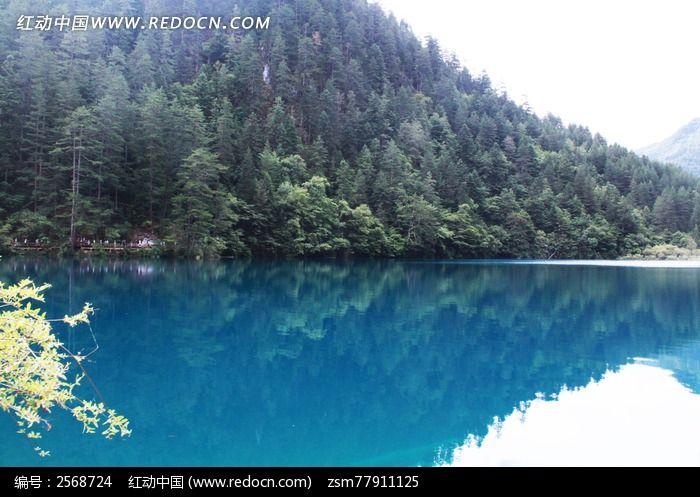 九寨沟/成都九寨沟山水 流水河流蓝色青山树木树林 美景 风景名胜