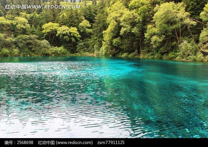 成都九寨沟/成都九寨沟山水 流水河流蓝色青山树木树林 美景 风景名胜