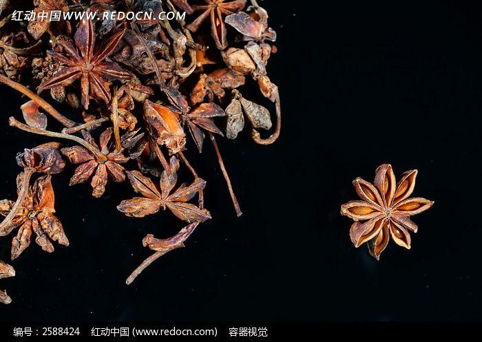 八角 茴香图片