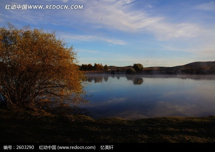清晨湖边树木剪影图片,高清大图_江河湖泊素材