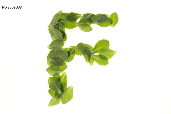 绿色树叶组成的字母f图片
