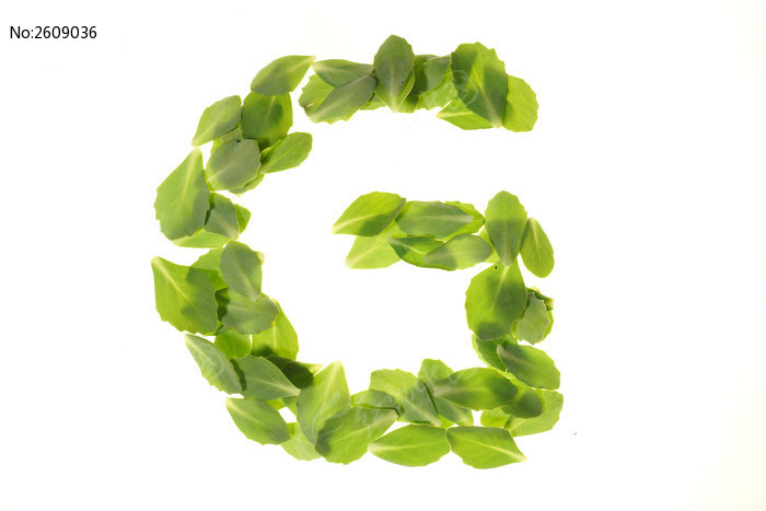 绿色树叶组成的字母g图片