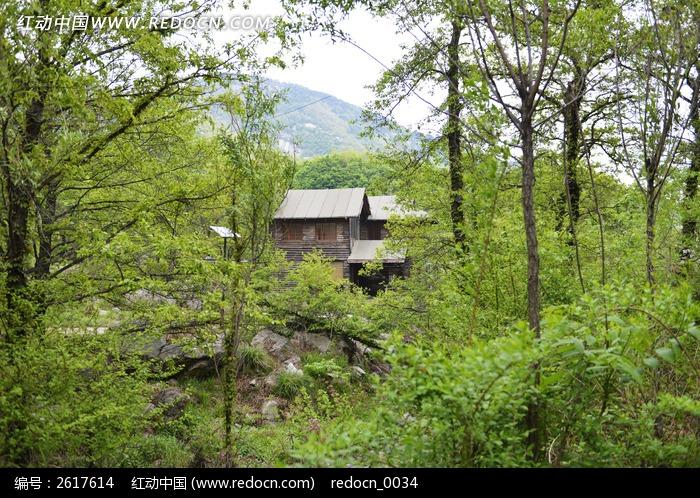 山林中木屋图片